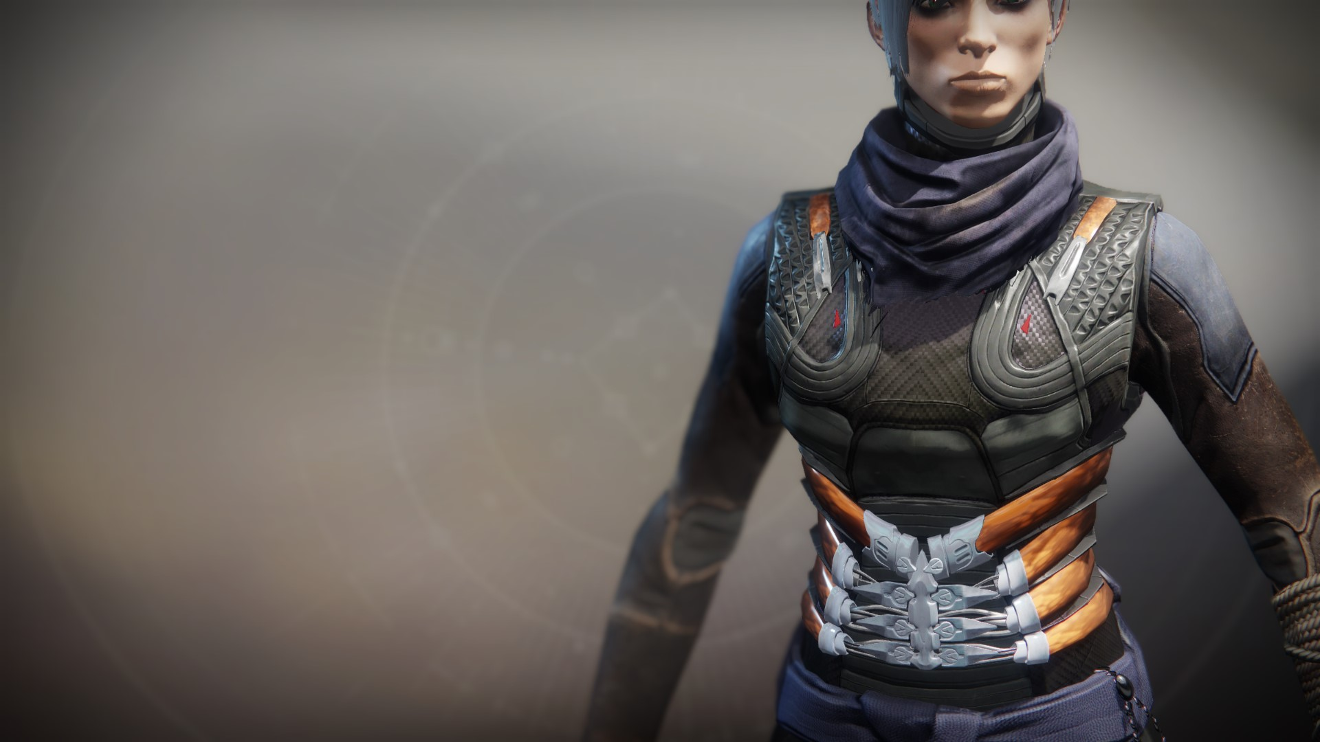An in-game render of the Raiden Flux.